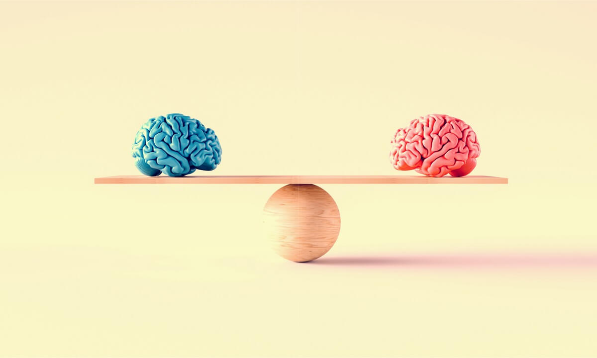 Genered brains on seesaw