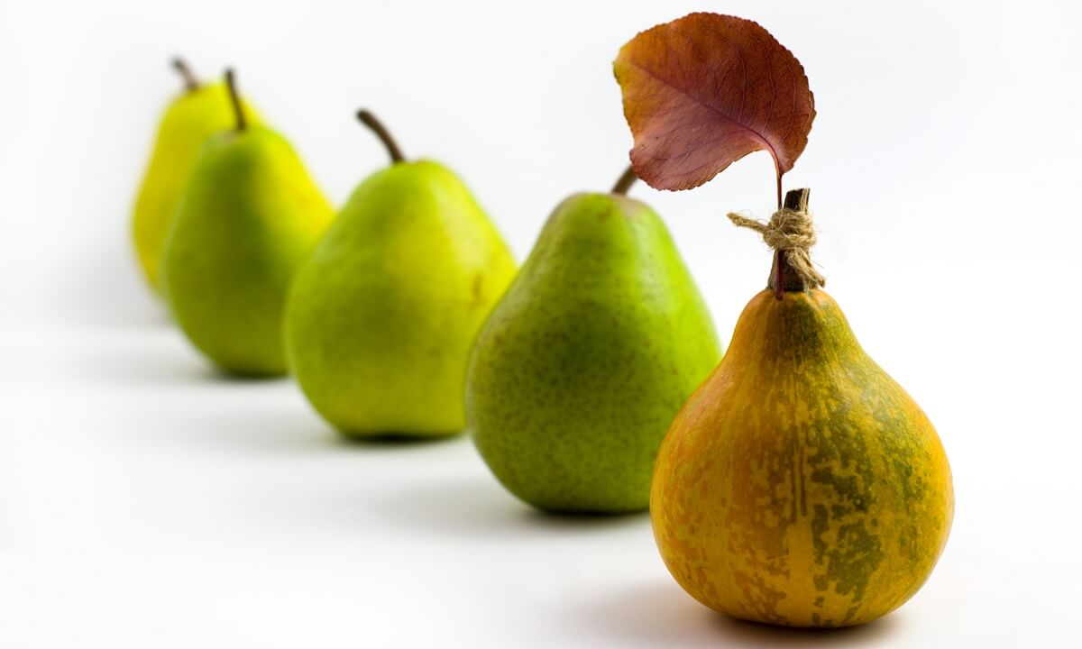 Imposter pear